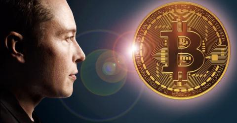 Мошенники зарабатывают миллионы на раздаче биткоинов от Илона Маск
