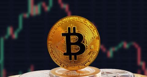 РАКИБ создала инструмент для определения официальной цены биткоина